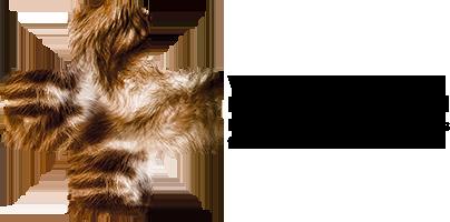 Fach- und Überweisungsklinik für Hunde und Katzen