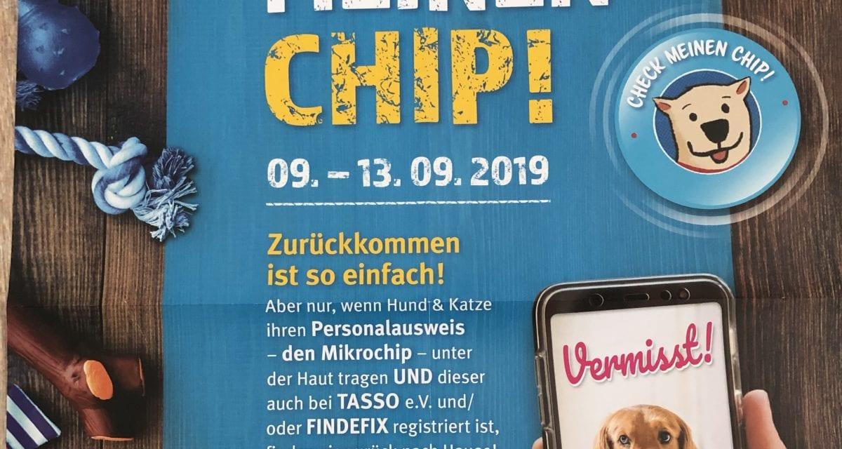 AKTION: Check meinen Chip